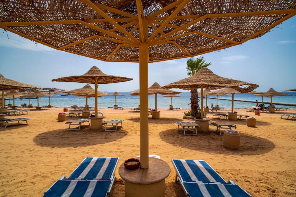 Современный, красивый отель Sierra Sharm El Sheikh 5*